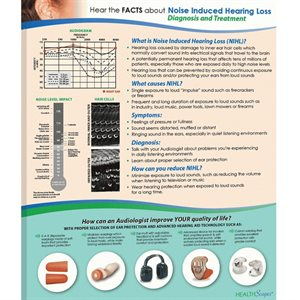 HealthScapes Brochure-Noise-Induced Hearing Loss (20 / pk)
